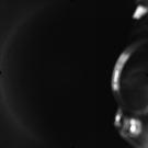 AS17-M-0320
