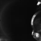 AS17-M-0321