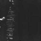 AS17-M-1312